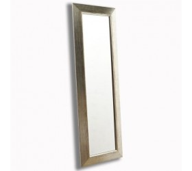 Contemporary Styled full length Wall Mirror