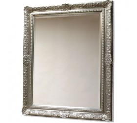 Silver Decorative Wall Mirror